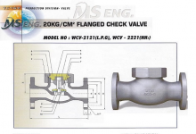 FLANGED CHECK VALVE